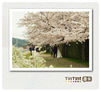 京都明信片